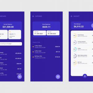 Xamarin Forms Masterclass - Budget App